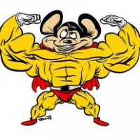 Mousy54