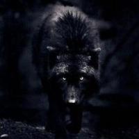 silverwolf789